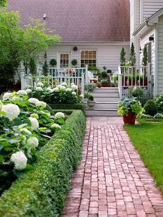 love this back porch....lots of green with white hydrangeas, love the brick sidewalk!