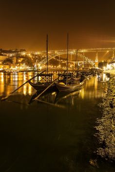 Lights, boats and fish by Jose Moreira on 500px