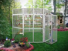 bird rooms for parrots | Massive Outdoor Bird Cage, Custom Outdoor Bird Room