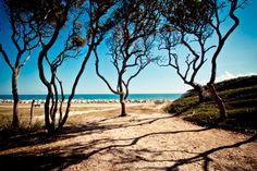 Fort Fisher, Kure Beach, NC   We love, love this perfect family spot on NC's beautiful beaches!