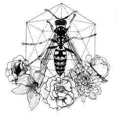 Wasp and flowers Sacred geometry #sacredgeometry