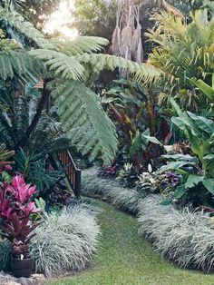 s-media-cache-ak0.pinimg.com 736x e8 bd c9 e8bdc932499a02402c1018432a44fc6e--tropical-patio-tropical-landscaping.jpg
