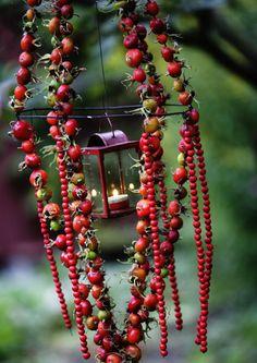 Tee koristeita syksyn marjoista   Meillä kotona