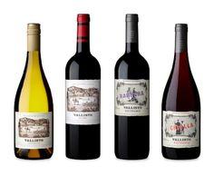 Blog de Vinos de Silvia Ramos de Barton -The Wine Blog- Argentina -: Vallisto y la fuerza de tres enólogos tops