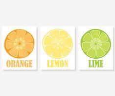 Kitchen Art - Orange Lemon & Lime - 3 Vintage Style Citrus Prints - 5x7, 8x10, 11x14 Illustration Prints
