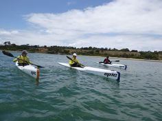 Kayak Shop Australia, the sea kayaking specialists in Melbourne. Offering sea kayak products, hire, rentals, courses and training. Ocean Kayak, Learn To Surf, East Coast, Kayaking, Melbourne, Skiing, Coastal, Australia, Explore