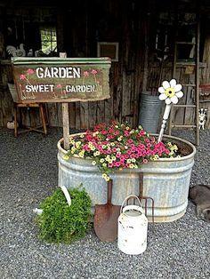 New flower color scheme for back deck 2018-----Garden sweet garden