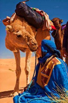 Бедуин со своим верблюдом