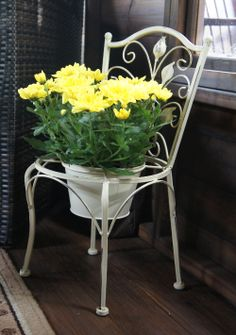 Chair Planter, Flora Garden, Decorative Planters, Old Chairs, Garden Chairs, Very Lovely, Flower Beds, Repurposed, Shabby Chic