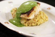 Jeroen maakt een visgerecht met traditionele stoemp en een culinaire peterseliesabayon. Roodbaars (of dorade) heeft vast en smakelijk wit visvlees. De knolselderstoemp past er perfect bij en het loont ook zeer de moeite om zelf eens een sabayon te maken. Dat laatste vergt een beetje techniek, maar eens je die te pakken hebt, wordt de bereiding een fluitje van een cent. Fish And Seafood, Seafood Recipes, Feta, Risotto, Food To Make, Foodies, Veggies, Favorite Recipes, Lunch