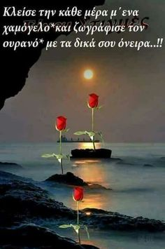 Good Night, Good Morning, Qoutes, Beautiful, Outdoor, Dios, Messages, Roses, Nighty Night