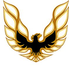 "Firebird Screaming Eagle Full Color Hood Decal 26.75"" X 28"""