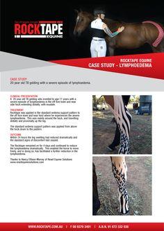 #RocktapeEquine #CaseStudy #Lymphoedema