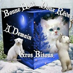 Joelle, Good Night, Affirmations, Animals, Hapy Day, Romantic Good Night, Bonjour, Kittens, Seasons