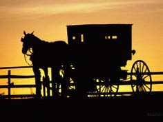 The beauty of an Amish sunset... an amishgazebos.com #gazebo can bring a little piece of Pennsylvania paradise to your backyard!