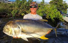saltwater fish high in mercury. monster jack crevalle