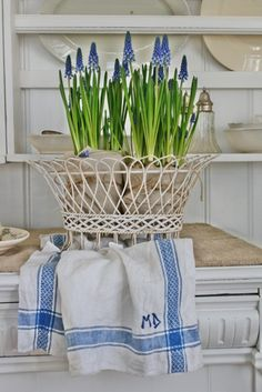 Cottage blue & white spring flowers-I have that wire basket, going to do this.