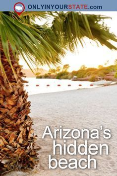 Travel | Arizona | Attractions | Hidden Gems | Hidden Beach | Beaches | Vacations | Getaway | Day Trip | Road Trips | USA | Visit | Natural Wonders | Nature | Adventure | Outdoor Attractions | Colorado River | Cattail Cove State Park | State Park | Arizona Parks | Arizona Beaches
