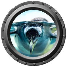 Penguin Peering In Porthole Vinyl Wall Decal on Etsy, $14.00
