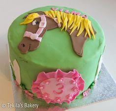 horse fondant cake