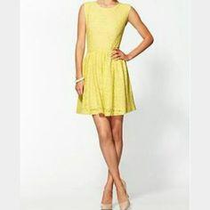 Sam&Lavi Yellow Lace Crochet Dress S