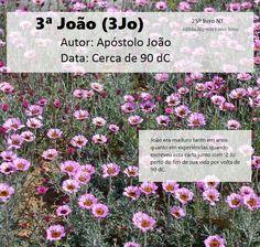 Bíblia Sagrada e seus livros: JOÃO 3 - Autor e Data (Jo3)