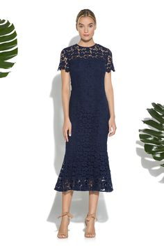 Navy Guipure Lace Park Midi Dress