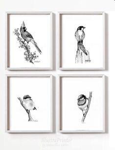 Quiero compartir lo último que he añadido a mi tienda de #etsy: LIMITED SET of 4 Bird ART Bird Prints drawing artwork Art Prints Set Art Decor Furniture Design House Descor Bird prints wedding Gift A4
