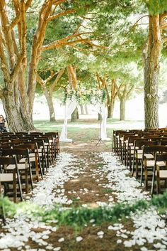 WHITE FLOWERS RIGHT & LEFT OF THE AISLE ON THE GRASS- PIC 2