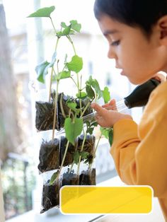 Plant seeds in a trading-card sleeve and sprout some fun. Cute for preschool classroom