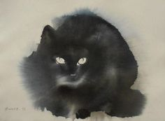 # Black Cat