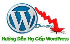 Hướng dẫn hạ cấp WordPress mọi phiên bản