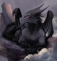 Beautiful black dragon ❤️