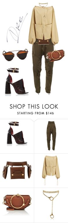 """""""My Trip to Australia"""" by stylinwitdre ❤ liked on Polyvore featuring E L L E R Y, Roberto Cavalli, STELLA McCARTNEY, Joseph, Chloé and Christian Dior"""