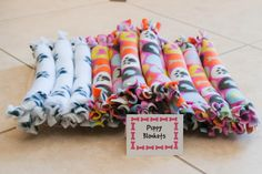 Puppy Party: The Details Puppy Blanket Station