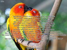 blogAuriMartini: Viver intensamente - Texto de William Shakespeare  http://wwwblogtche-auri.blogspot.com.br/2014/03/viver-intensamente-texto-de-william.html