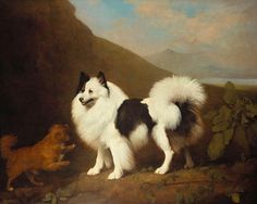 Fino and Tiny by George Stubbs, 1791. Royal Collection Trust. These dogs belonged to the Prince of Wales, future Prince Regent.