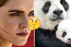 Answer These Questions And We'll Tell You What Movie To See This Weekend