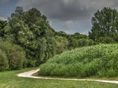 Parc Urbain à Savigny-le-Temple - Chemin serpentant
