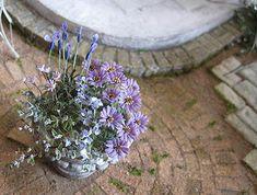 Flower pot arrangement. Dollhouse & Miniature ROSY, Yukari Miyazaki