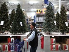 Because of the cost and environmental concerns, more and more people buy fake trees every year.  Which kind of tree will your family have: artificial or real? Take our poll!