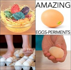 Amazing Egg Experiments! Eggs that won't break, eggs that fold, and naked eggs… It's hands-on egg science and STEM activities! (affiliate)