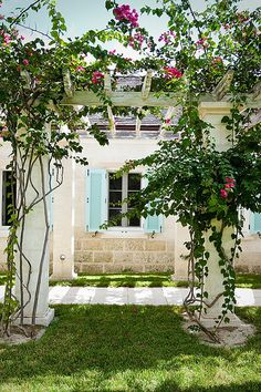 Magnificent bougainvillea frames the pathway leading to the main villa with a view from the front lawn. Situated on the Island of Providenciales in the Turks and Caicos, is the villa Amazing Grace.