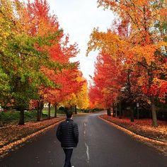 Beaverton Oregon