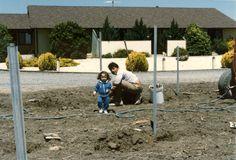 1st vineyard planted in 1986 - Carneros, Napa.