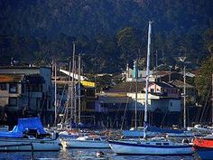 Monterey, California. Just like in Cannery Row :)