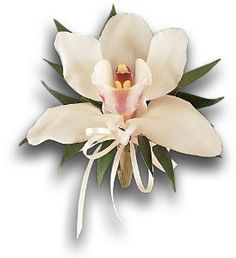 Order Cymbidium Orchid Corsage from The Orchid Florist, your local Waterbury florist. Prom Flowers, Wedding Flowers, Corsage And Boutonniere, Boutonnieres, Orchid Corsages, Cymbidium Orchids, Mob Dresses, Perfect Prom Dress