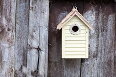 This Gardman Beach Hut Nest Box is a treat for the eyes and for the birds New Furniture, Outdoor Furniture, Outdoor Decor, Nest Box, Nesting Boxes, Beer Garden, Diy Supplies, Birdhouse, Outdoor Entertaining