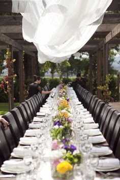 Vineyard wedding - LOVE the single long table!! (would have to be a small-ish wedding, though!)