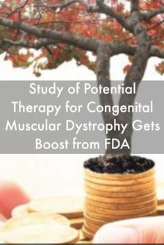 Study of Potential Therapy for Congenital Muscular Dystrophy Gets Boost from FDA #MuscularDystrophyNews